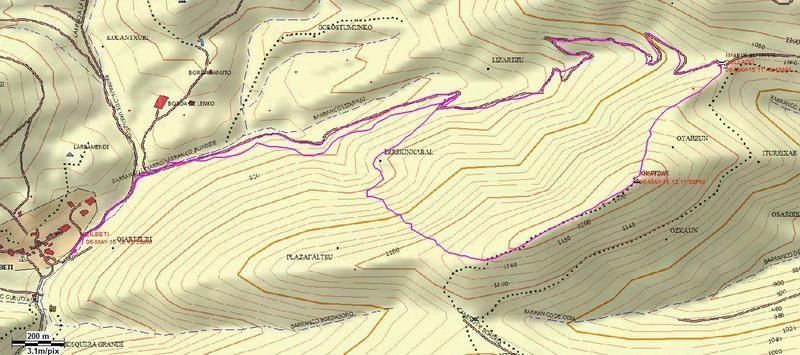 TIRATUN (El vergel de Zilbeti) Tiratun%20topo