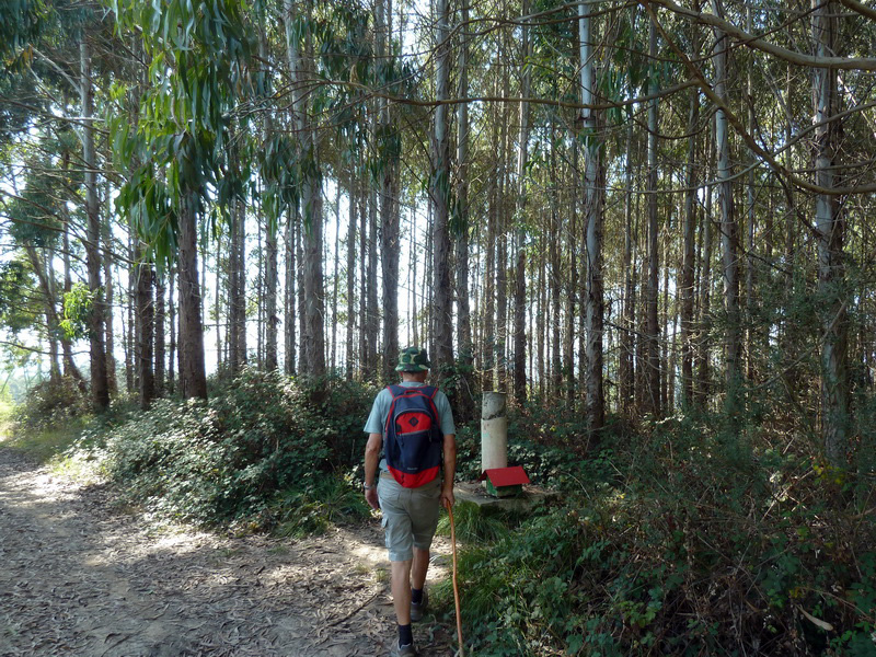 URIZARMENDI (Los paseos costeros nunca defraudan) P1130641_resize