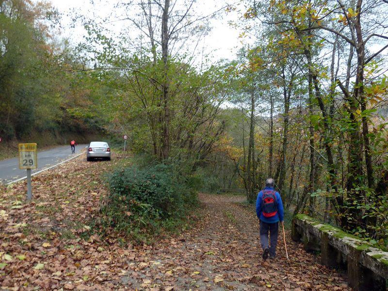 SARATSAGA Y URTIETAKO GANA (Un paseo cerca de casa) P1130993_resize