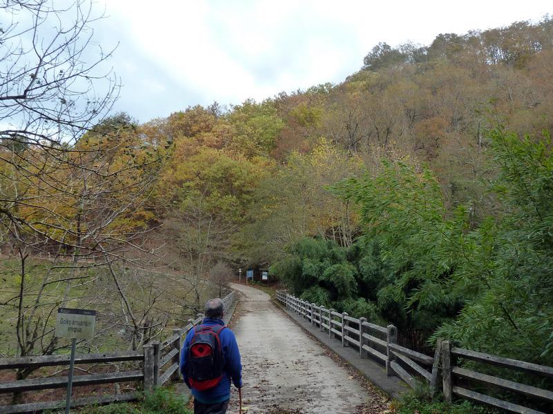 SARATSAGA Y URTIETAKO GANA (Un paseo cerca de casa) P1130994_resize
