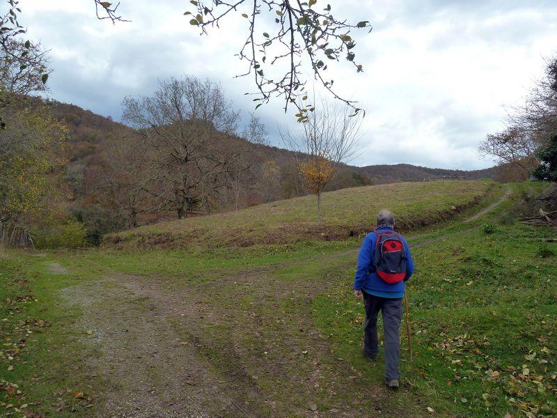 SARATSAGA Y URTIETAKO GANA (Un paseo cerca de casa) P1130996_resize