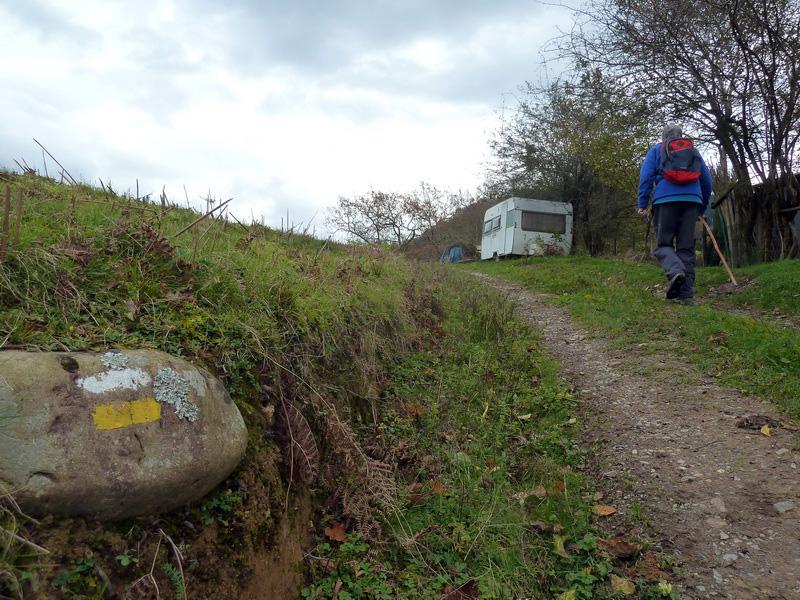 SARATSAGA Y URTIETAKO GANA (Un paseo cerca de casa) P1130997_resize