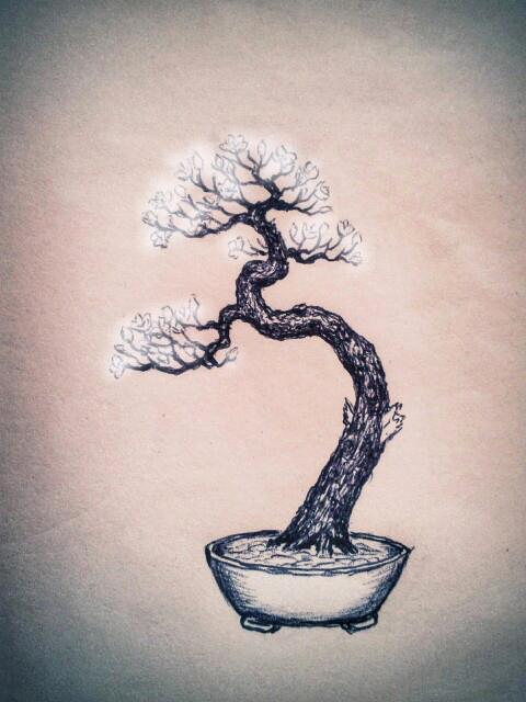 Piccolo Prunus mahaleb Mahaleb04_zps6dfd75bf