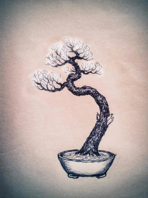 Piccolo Prunus mahaleb Mahaleb05_zpsb2039597