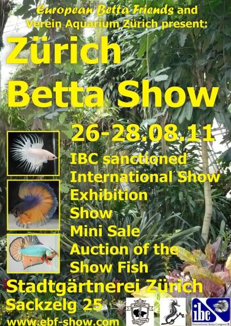 Zürich Betta Show 26-28 août 2011 by European Betta Friends PlakatZrichBettaShowWebengl