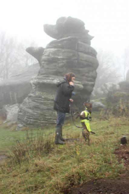 A foggy soggy dog walk! IMG_6359