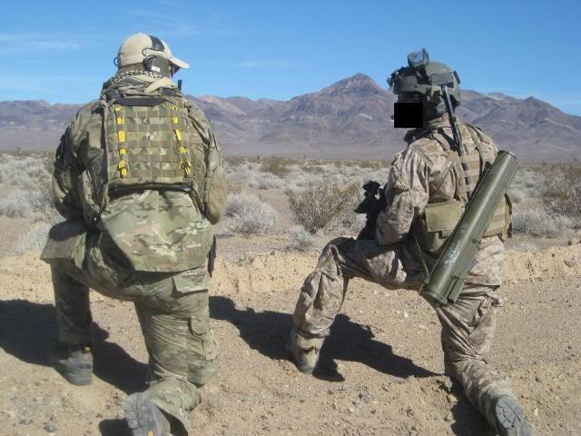 AOR1/Digi2   NSW/DEVGRU Exclusive desert camouflage by Crye Precision 6jg55x-2