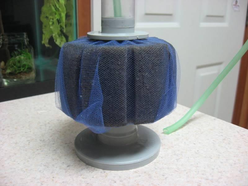 Sponge filter 72de1915