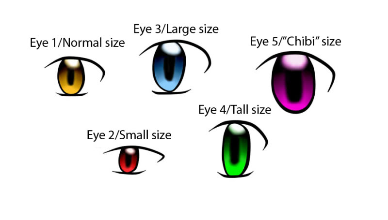 Trainer Concepts Eyesizescopy
