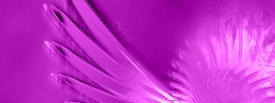 Oreo's Artt Lighterwithnamecopy