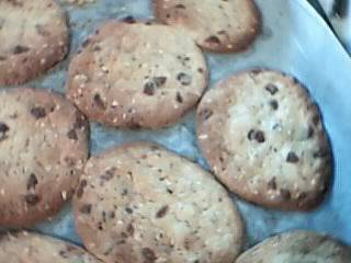 Chocolate chunk cookies Picture511