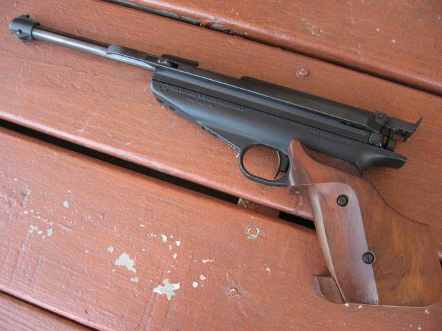 Air pistol vs 22 003_zpsab2f325c