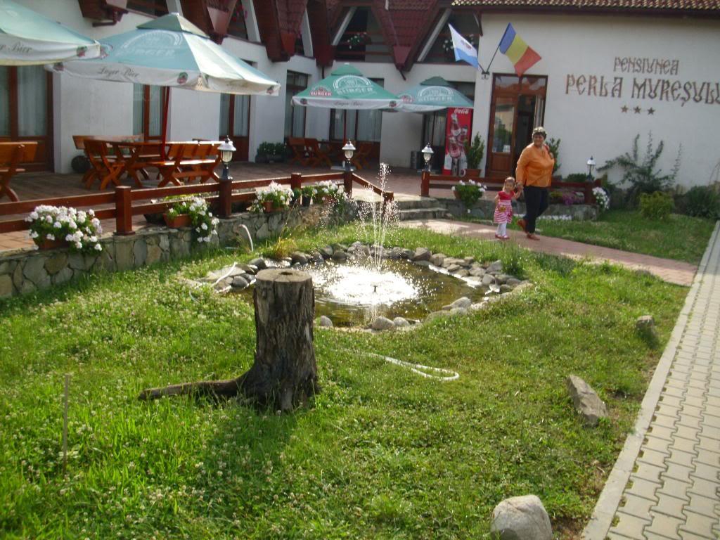 2014.Un an cu sot, numai bun de intilniri....fac strigare de intilneala laAlba Iulia. - Pagina 9 IMG_3263