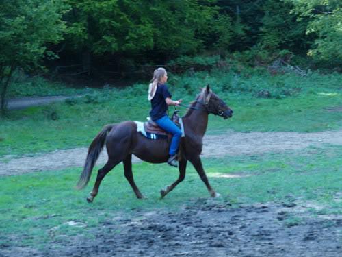 Ranch Bubač CopyofP9096862