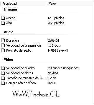Posdata: Te Amo.AudioLatino.DvDRip-XviD.[MU]&[RS] DatosPDTeAmo