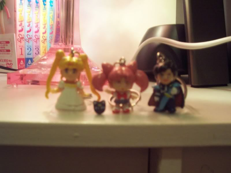 Your Sailor Moon Collection / Stuff 100_2716