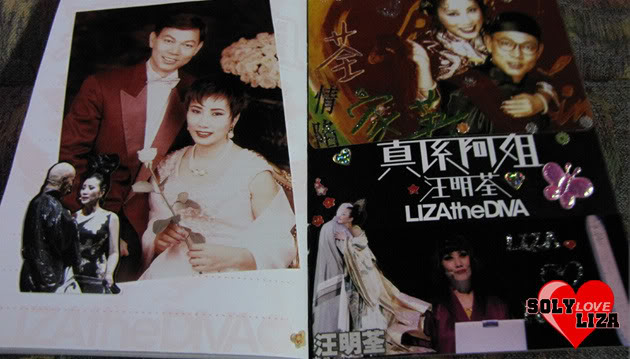 Collection - Liza Wang & Mr Law J