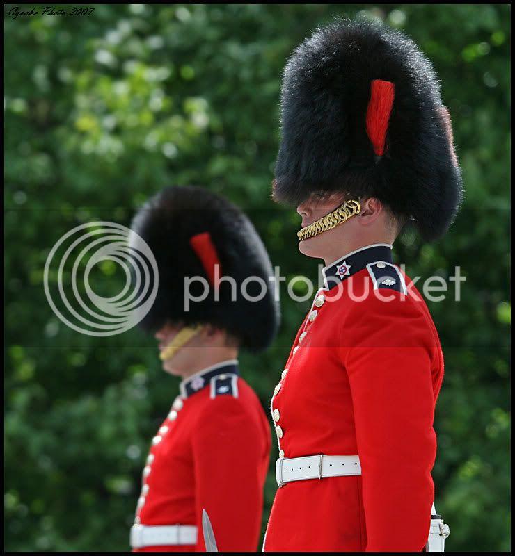 Happy Canada Day! IMG_4593