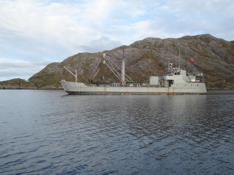 Armada de Chile DSC00119