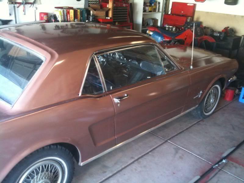 Andy's 66 Mustang Mustang1