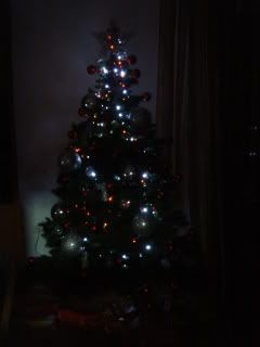 Desafio das decorações de Natal - Página 4 DSC08094