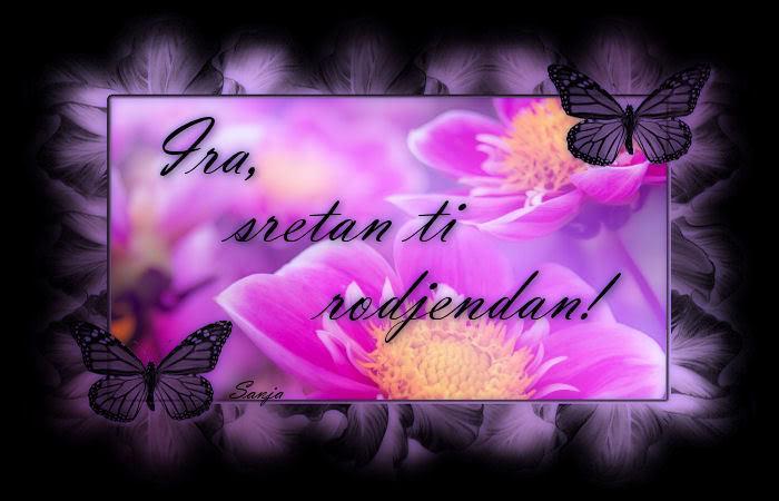 Ira srecan ti rodjendanko :) Ira_rodjendan