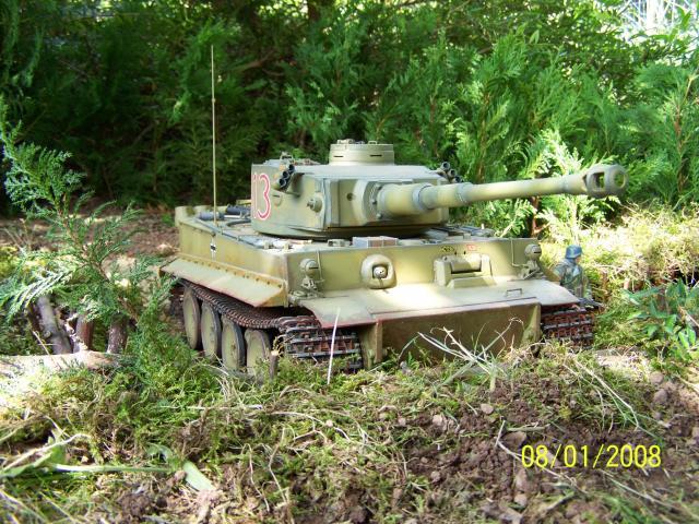 Ein Tiger in Afrika 100_1517_zpsee40bba0