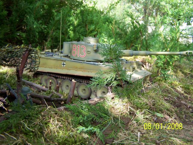 Ein Tiger in Afrika 100_1518_zpsc1f8c0ed