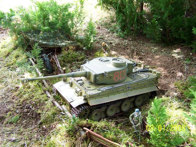 Ein Tiger in Afrika 100_1524_zpsb4677aa5