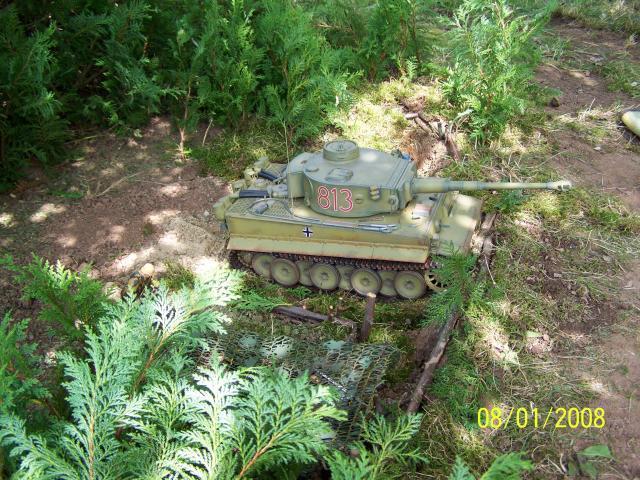 Ein Tiger in Afrika 100_1529_zps0b28088c