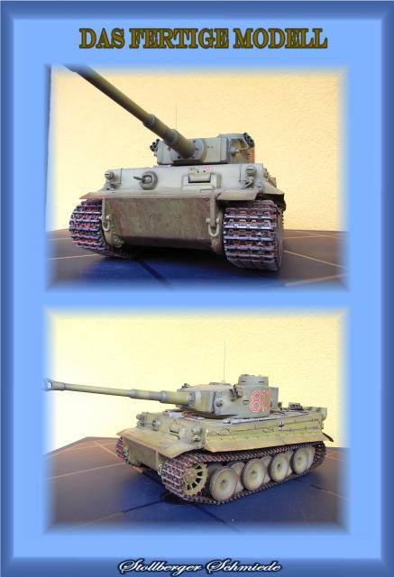 Ein Tiger in Afrika TigerISeite43_zpsfec30a34