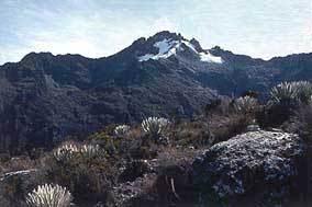 Rincones de mi patria, si se puede hacer turismo en Vzla - Página 2 Highest_point_venezuela