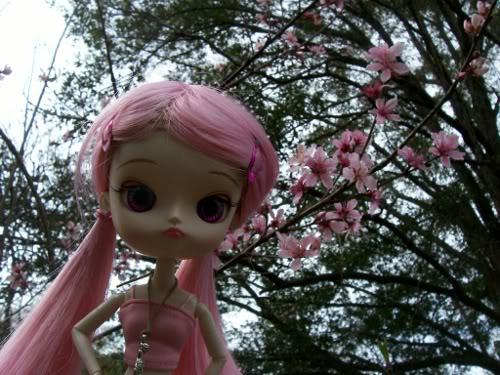 Magical pink chan Sakurapeach4