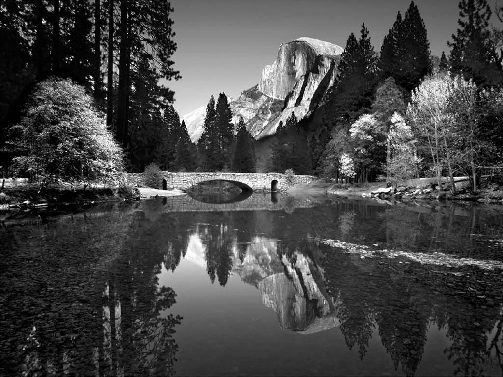 Crno-bela fotografija - Page 3 Yosemite