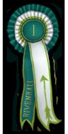 2.2.2015 Ratsastusjousiammuntakilpailut (tarina, mukana arvonta) - TULOKSET Jousipalkinto1
