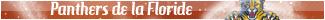 Les Panthers de la Floride
