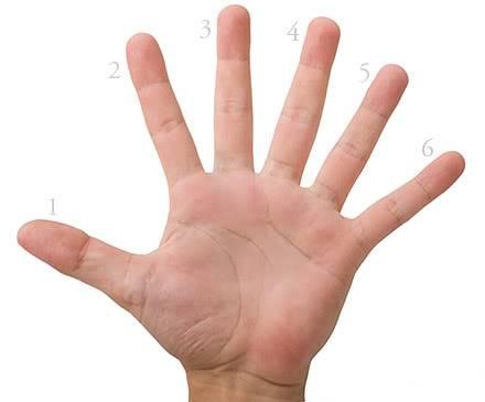 Suivre le fil 1 2 3... Six-fingers