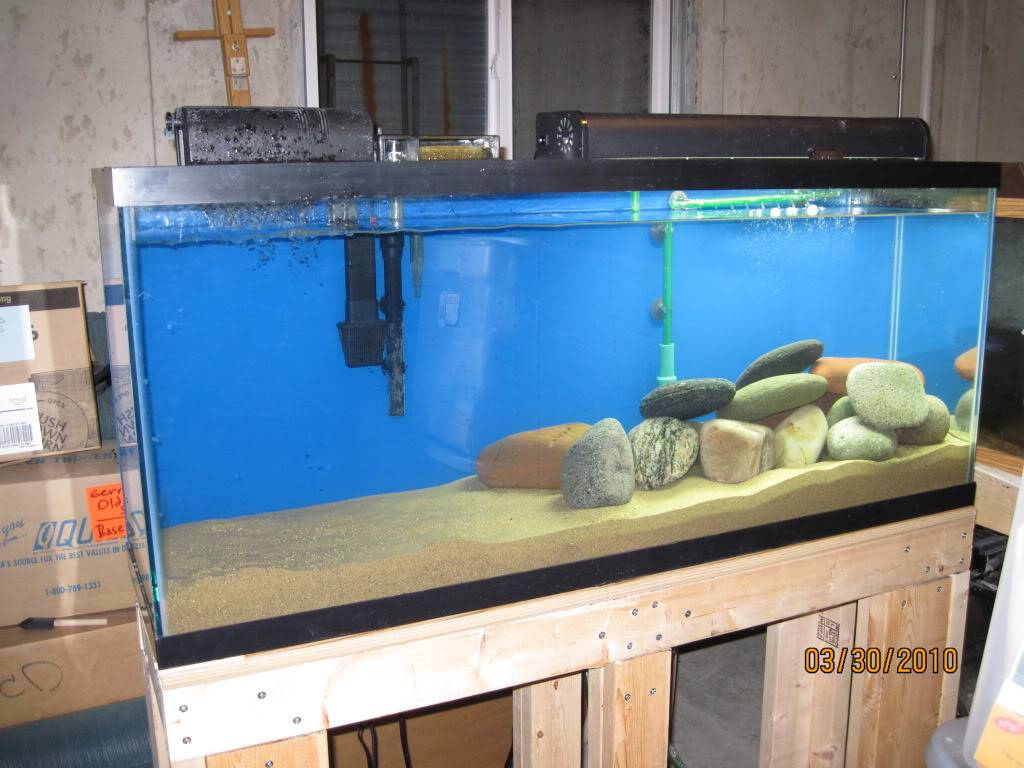 Setting up a Jack Tank IMG_0130