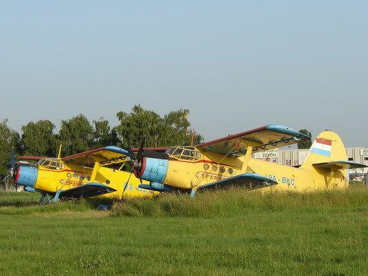 Antonov AN-2 DSC08004_resize_resize
