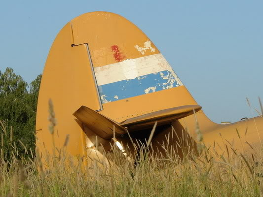Antonov AN-2 DSC08016_resize_resize