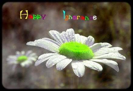 (Manga) Dragon Ball Copiede20070504210858_marguerite-1