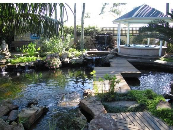 One of the best ponds in SA Pond-Drummond