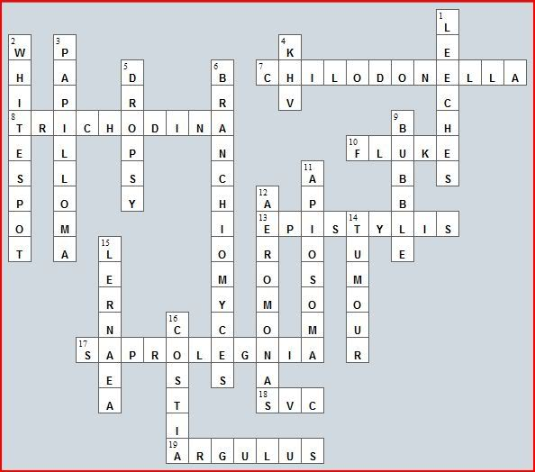 Crossword puzzle No 4 - Diseases and parasites Cw-healthsolution