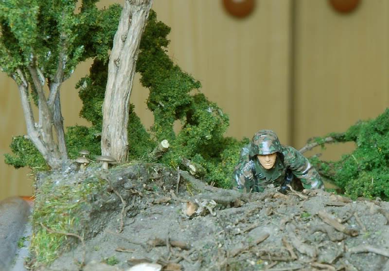 Grenadier aux champignons (1:35) Grenadier2