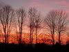 Divine Art Sunrise010