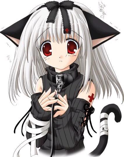 **GATOS DEL ANIME** Animelittleblackcat