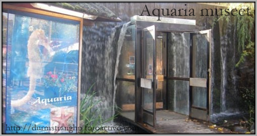 Aquaria Museet AquariaMuseet