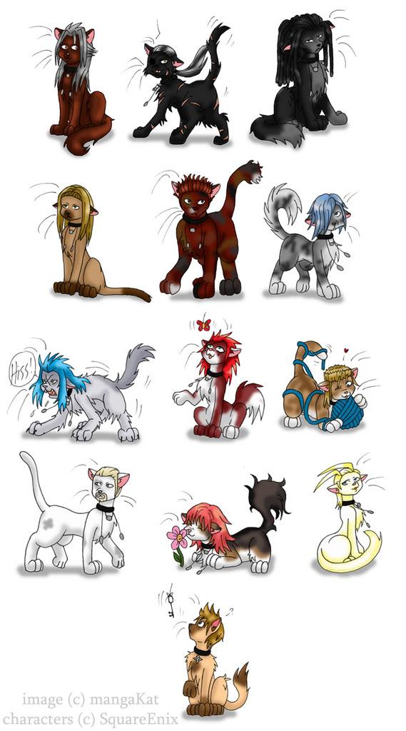 organization kittens