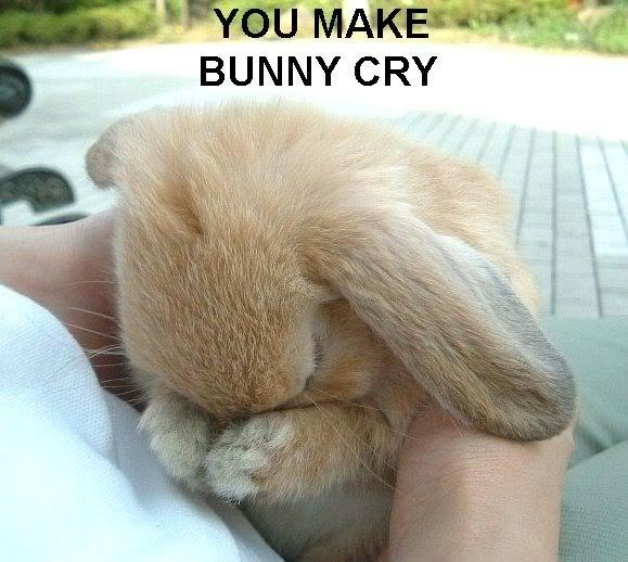 batallita  You-make-bunny-cry