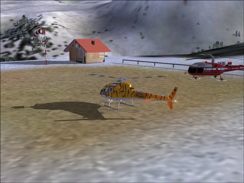 [Fs9]Esquiando com tigre de bengala 015